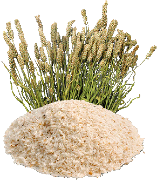 Psyllium Husk Natural Colon Cleaning 100г
