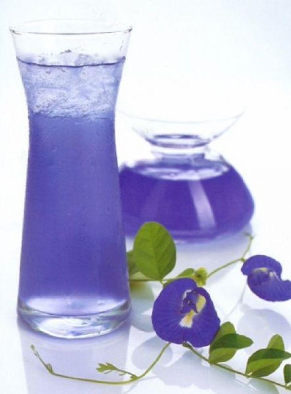 синий чай анчан купить