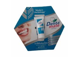 Denta Mate Herbal Toothpaste Concentrated formula 6г